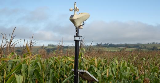 Empresas do agronegócio já têm utilizado tecnologias de sensoriamento remoto para monitorar sua produção em tempo real