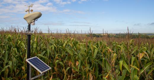 Alguns desafios no campo são quase impossíveis de prever, visto que depende de uma série de fatores que não são da alçada dos produtores rurais.